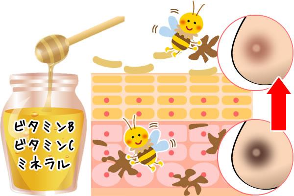 乳首のケアに効果的なハチミツパック